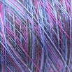 Valley Yarns Variegated 8/2 Tencel - 4960-05a