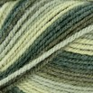 Plymouth Yarn Encore Colorspun - 7148