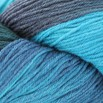 Valley Yarns 40th Anniversary Huntington - hand dyed by Lorna's Laces - Harrison