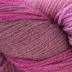 Valley Yarns 40th Anniversary Huntington - hand dyed by Lorna's Laces - Passion