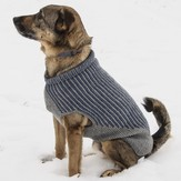 Blue Sky Fibers Bird Island Dog Sweater PDF