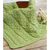 Valley Yarns WEBS Emerging Designer #04 Sproutlet Blanket PDF