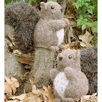 229 Nuts About Squirrels