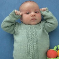 Fiddlehead Pullover (Free)