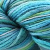 Manos del Uruguay Wool Clasica Space Dyed Discontinued Colors - 116