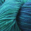 Madelinetosh Tosh Chunky - Forestry