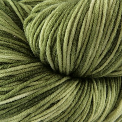 Plymouth Yarn Select Worsted Merino Superwash Kettle Dyed